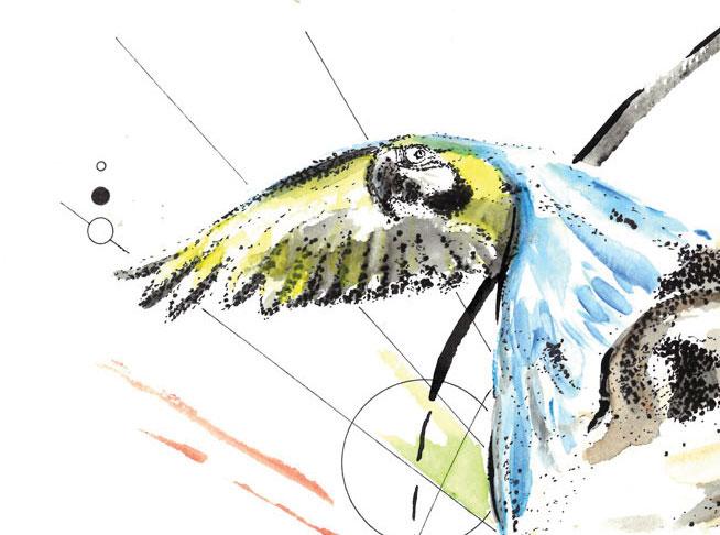 """Détail du dessin (en partie pointillisme) intitulé """"VI (Vertebrata)"""" réalisé au stylo à l'encre de Chine et à l'aquarelle par Christophe Moulinier."""